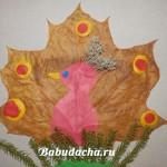 Аппликация из листьев «Павлин» для детей 4 — 5 лет: наш мастер-класс