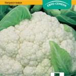 Сорта цветной капусты: описание