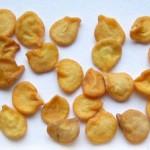 Как замочить семена перца перед посадкой? Способы замачивания