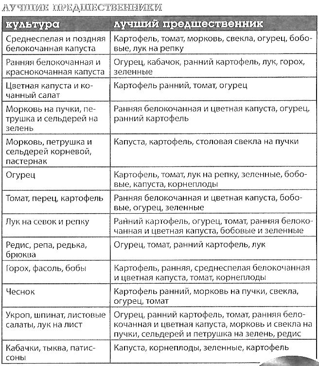 Какие культуры сажать после овощей