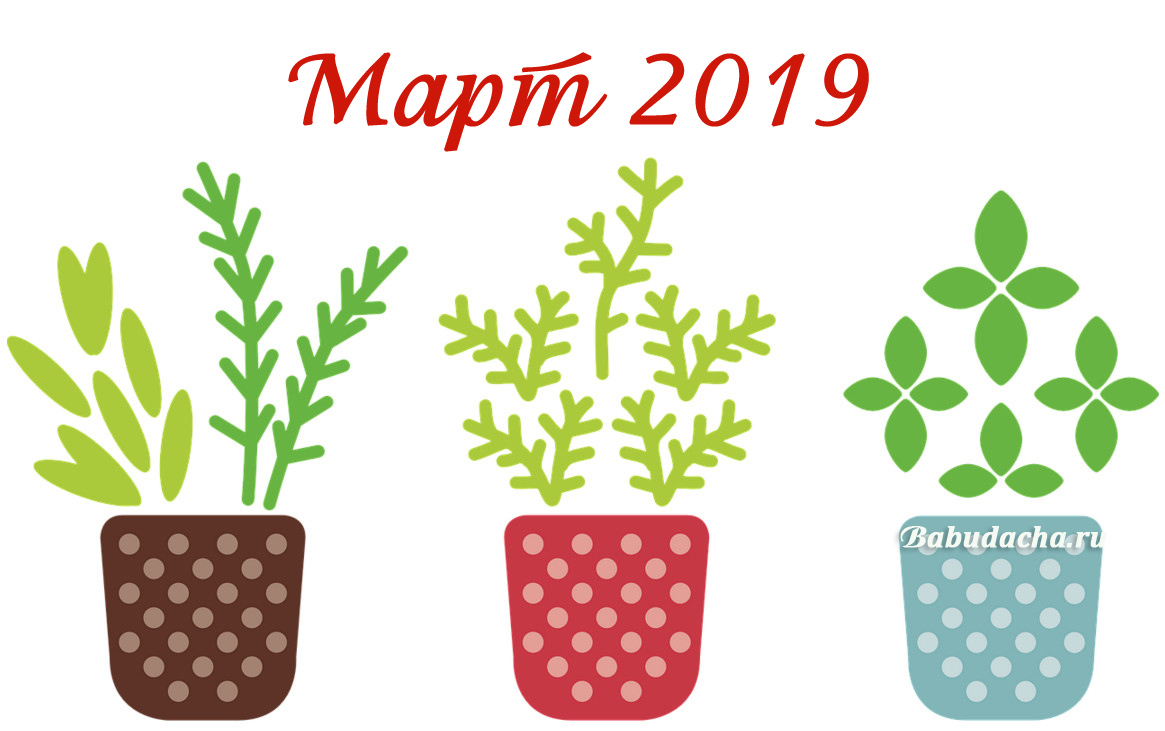 Март 2019: Календарь благоприятных дней для посадки
