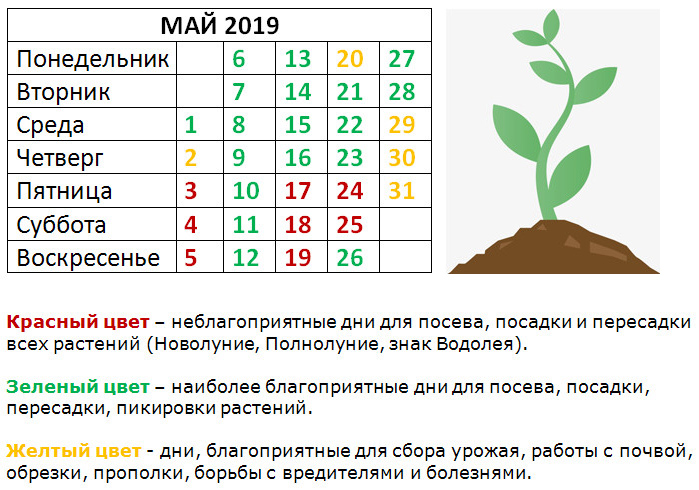 mai2019-04-16_141750
