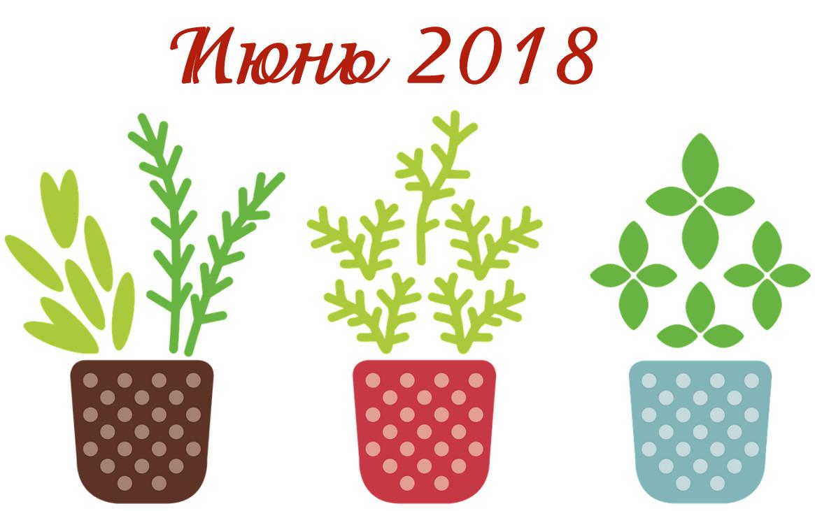 Календарь: Благоприятные дни для посадки в июне 2018 года