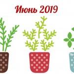 Благоприятные дни для посева и посадки в июне 2019 года (Лунный календарь)