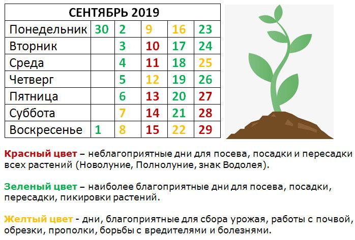 2019-08-16_153636