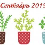 Благоприятные дни для посева и посадки в сентябре 2019 года (Лунный календарь)