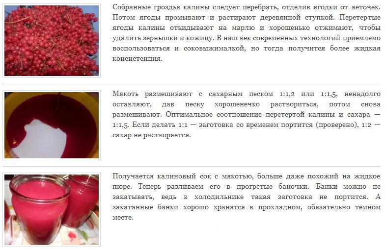 Когда спелая калина собрана, можно приготовить из ягод вкусный джем