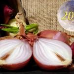 Осень 2018: Когда сажать лук под зиму?