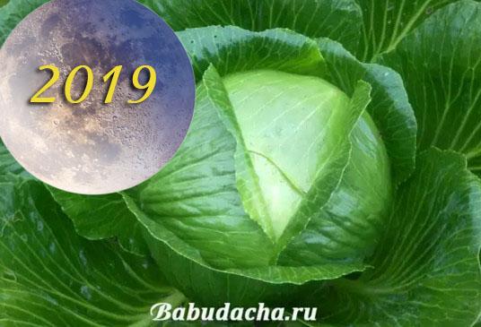 2019-08-17_141943