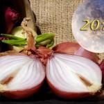 Осень 2019: Когда сажать лук под зиму?