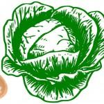 Квашение капусты: Сколько соли на 1 кг капусты нужно положить для вкусной засолки?