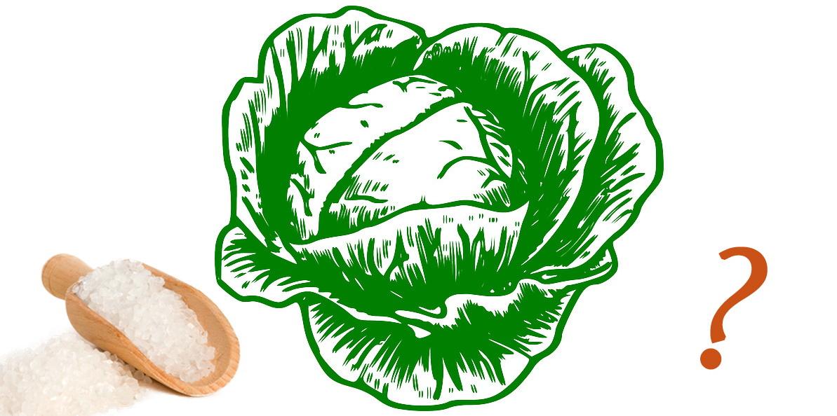 Квашеная капуста: сколько соли нужно на 1 килограмм?