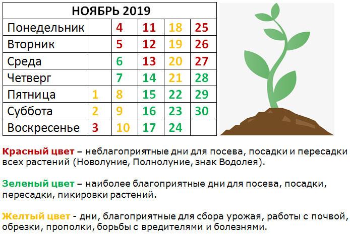 2019-10-22_104017