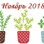 Благоприятные дни для посадки в ноябре 2018 года (Лунный календарь)