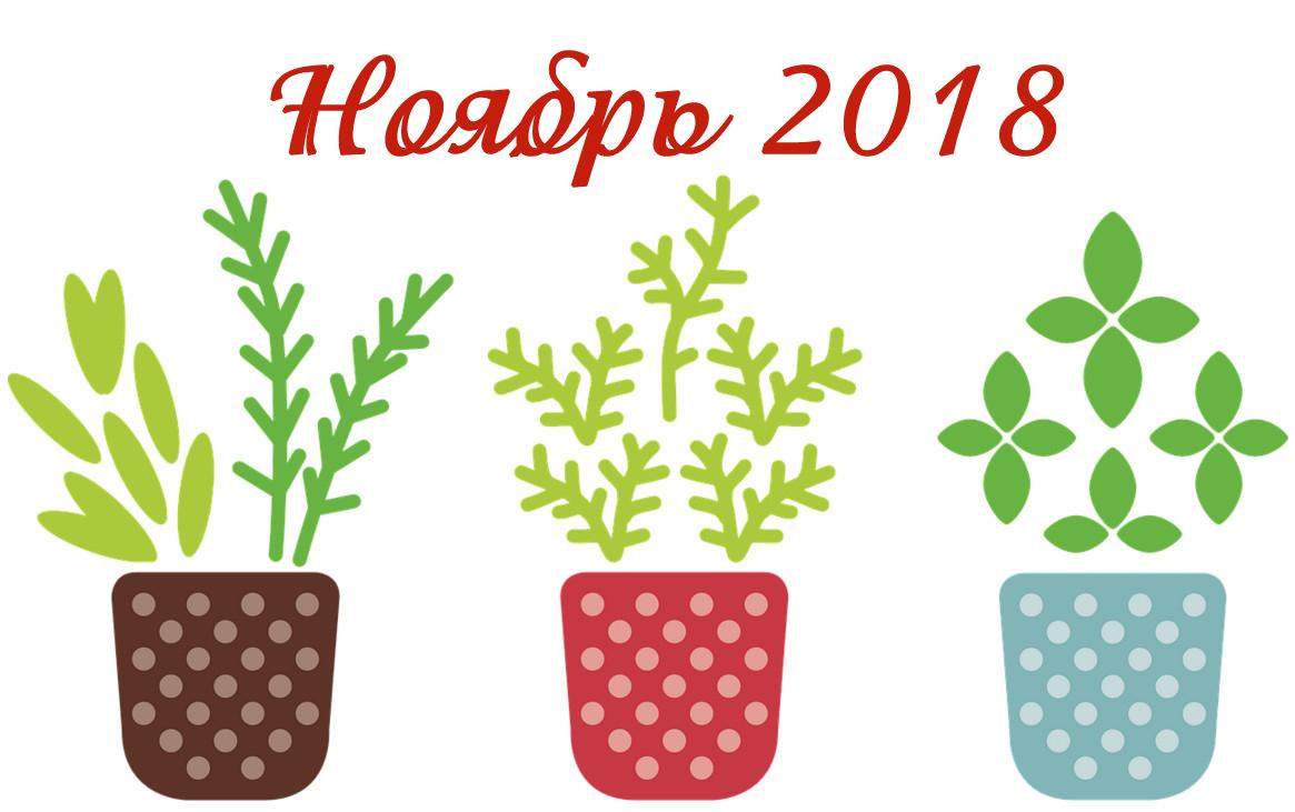 Календарь лунный посевной для садовода и огородника, Ноябрь 2018