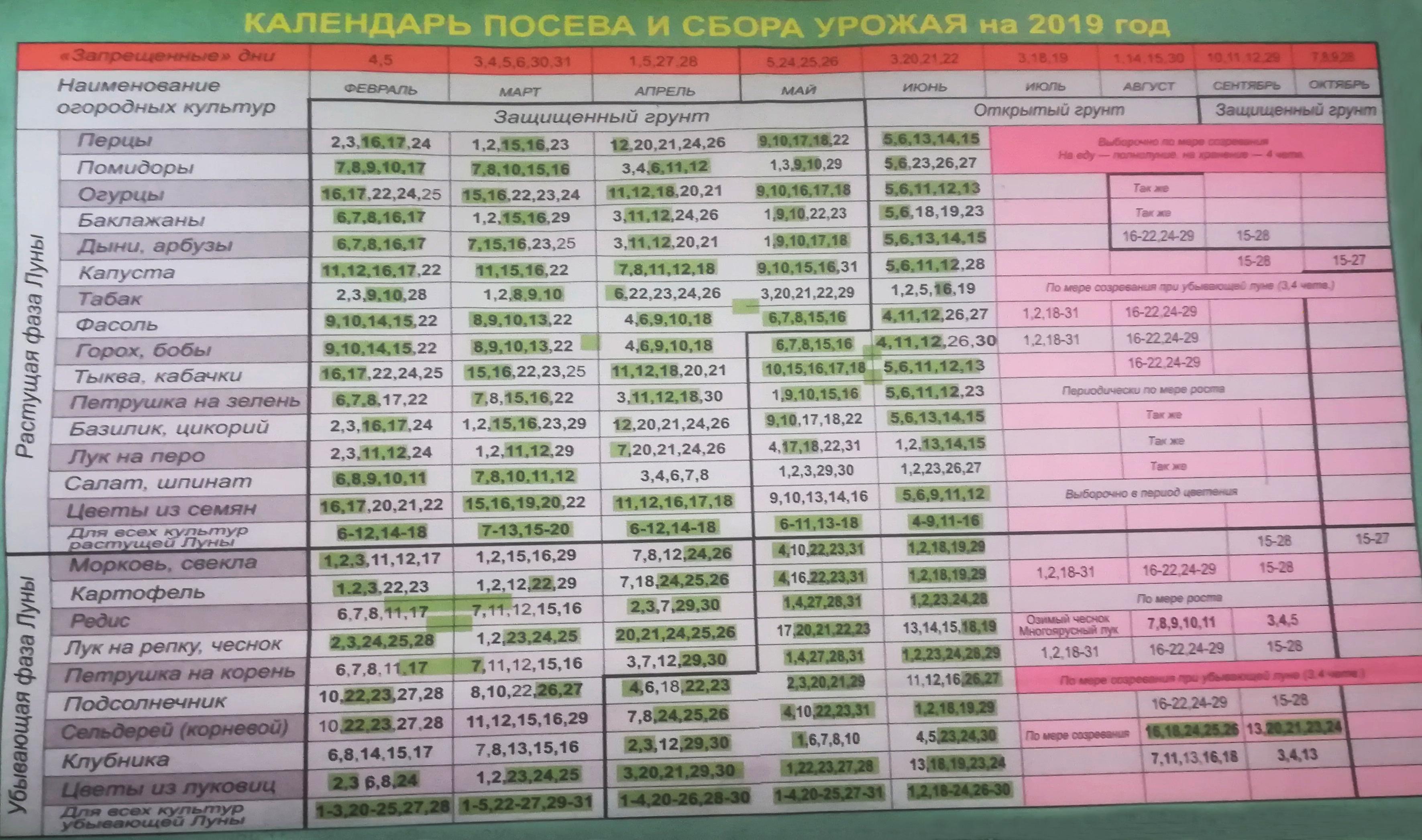 Календарь посева семян и сбора урожая, Сибирь 2019