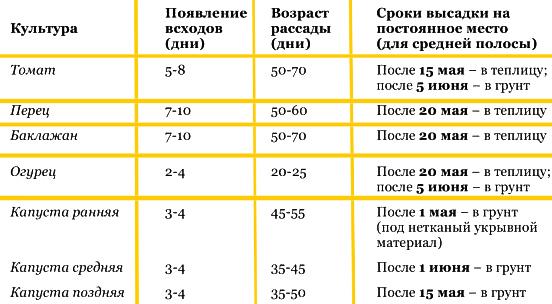 Обобщенная таблица высадки рассады овощных культур