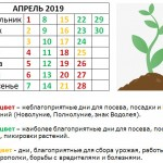 «Разноцветный» посевной календарь на апрель 2019 года (Лунный)