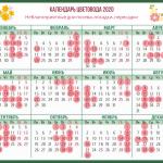 Календарь цветовода на каждый месяц 2020 года, благоприятные дни для посадки, полива и других работ