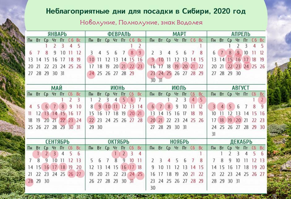 Сибирь 2020 календарь садовода