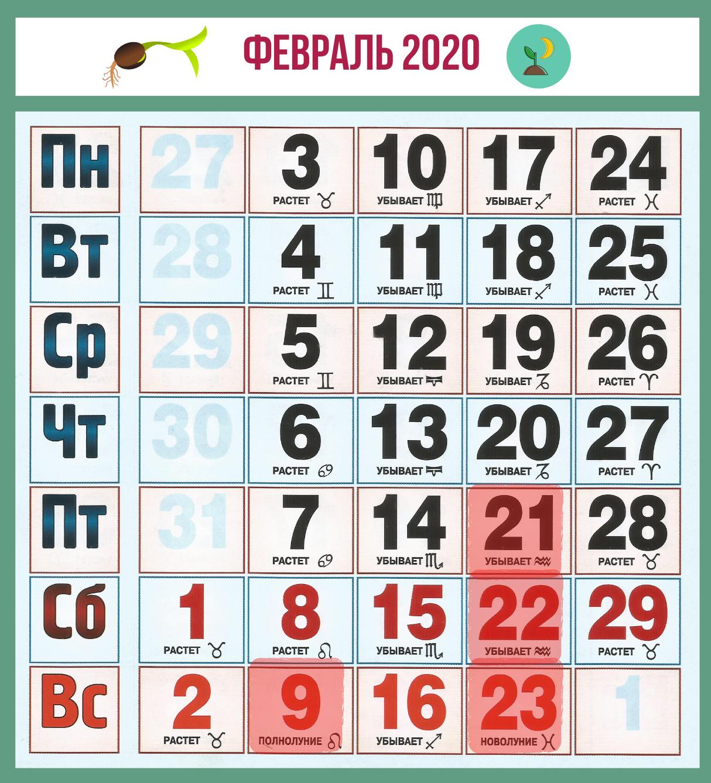 февраль 2020, календарь садовода и огородника